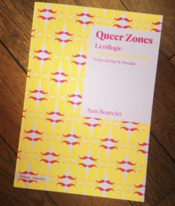 Queer Zones la trilogie de Sam Bourcier - Lecture Queer