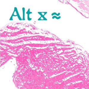 Alt x ≈ festival